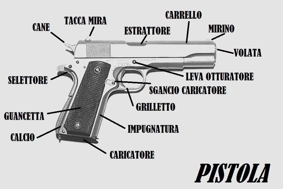 Costi per ottenere il porto d 39 armi archivi sopravvivere - Porta d armi uso sportivo ...