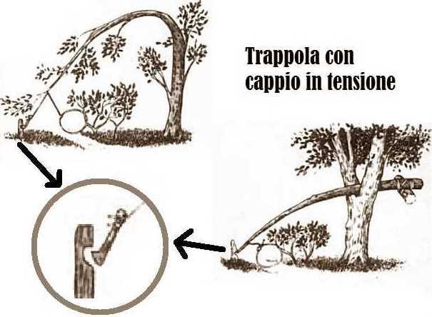 trappola