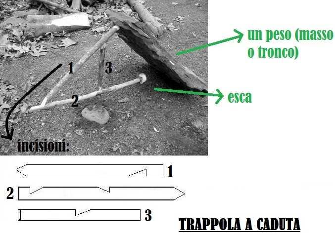 trappola2